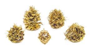 Golden cones Stock Photography