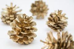 Golden cones Royalty Free Stock Photos