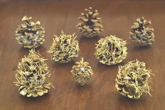 Golden cones Royalty Free Stock Images