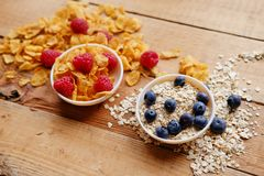 Golden corn flakes, Hercules oat and some berries in a cup on a Stock Image