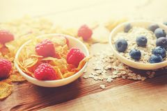 Golden corn flakes, Hercules oat and some berries in a cup on a Royalty Free Stock Images