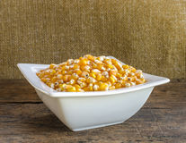 Golden corn grain in the bowl . Stock Images