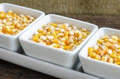 Golden corn grain in the bowl . Shallow depth of field. Stock Photo