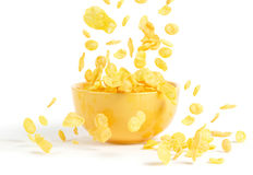 Golden cornflakes. Falling into the breakfast bowl Royalty Free Stock Photo
