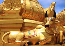 Golden cow. A golden cow details in the temple Royalty Free Stock Photography