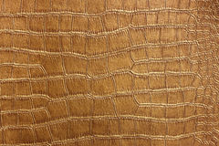 Golden Crocodile Skin Texture and pattern, closeup Stock Images