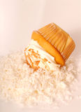 Golden cupcake with buttercream and coconut Stock Image