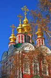 Golden cupolas of a church in Novodevichy convent in Moscow Royalty Free Stock Images