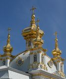 Golden cupolas, Peterhof. It's Golden cupolas of Russian Church, Petrodvorets (Peterhof Royalty Free Stock Image