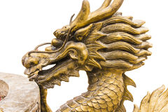 The golden dargon Stock Photos