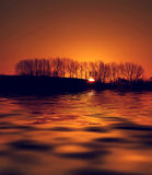 Golden Dawn. Dawn sun coming up behind a row of trees reflected on water which has been manipulated Royalty Free Stock Images