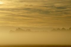 Golden dawn above the mist Stock Photography
