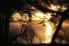 Golden dawn over the Mouro island Royalty Free Stock Photos
