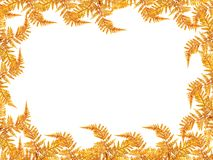 Golden decoration frame Royalty Free Stock Image
