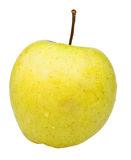 Golden delicious apple Royalty Free Stock Images