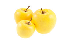 Golden delicious juicy apples isolated on white Stock Image