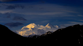 Golden Denali. Denali (Mt. McKinley) displaying the alpenglow Stock Images