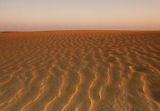Golden Desert Royalty Free Stock Image
