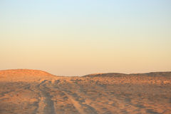 Golden desert sand at sunset. Gradient on the horizon.  Stock Photo