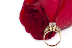 Golden diamond ring and rose. Valentine Series royalty free stock photography