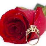 Golden diamond ring and rose. Valentine Series stock photos