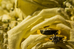 Golden Diamond Wedding Rings Together Bright Yellow Flower Petals Royalty Free Stock Images
