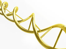 Golden DNA. Beautiful 3d illustration of a golden DNA Stock Photo