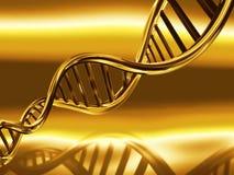 Golden DNA strands vector illustration