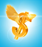 Golden Dollar Stock Photos