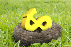 Golden dollar sign in nest Royalty Free Stock Images