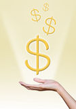 Golden dollar sign over hand Stock Photos