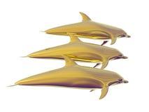Golden Dolphins Stock Photos