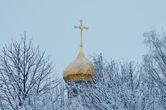 Golden dome of the church on the background of winter trees and overcast sky.  royalty free stock photos