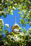 A Golden dome with a cross surrounded by spring flowers. On Apple Stock Photography