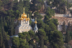 Golden domes of the Church Stock Photography