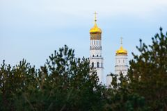 Golden domes of Ivan the Great Bell Tower. Gleaming onion domes, whitewashed octagonal bell tower. View from Zaryadie Park. Golden domes of Ivan the Great Bell royalty free stock photography
