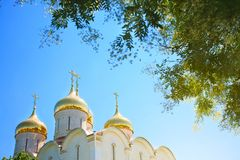 Golden domes of the Orthodox church against the blue sky. Stock Photography