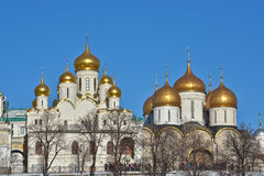 Golden domes of Orthodox churches of the Moscow Kremlin. Stock Image