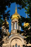 Golden Domes of Russian Orthodox Church. The golden domes of the Russian Orthodox Church of St. Elizabeth in Wiesbaden, view through foliage royalty free stock image