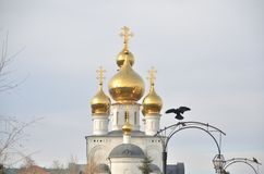 Golden domes of the Savior Transfiguration Cathedral stock photography