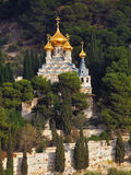 Golden domes of St. Mary Magdalene Royalty Free Stock Photos