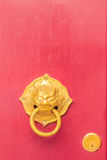 Golden door knocker in the shape of lion with ring on a red wood Royalty Free Stock Images