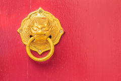 Golden door knocker in the shape of lion with ring on a red wood Stock Photo