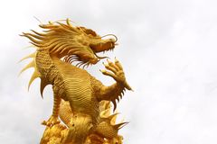 Golden dragon. Statue in chinese temple in Chonburi province Thailand Stock Images