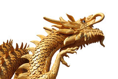 Golden dragon Stock Photos