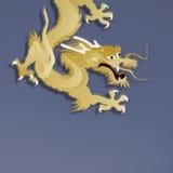 Golden dragon on blue background Stock Photos