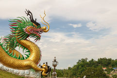 Golden dragon. Chinese Golden dragon close-up, Thailand Royalty Free Stock Photography