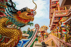 Golden dragon in Chinese shrine Stock Image