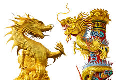 Golden dragon Chinese style. Golden dragon of Chinese style in thailand Stock Photos