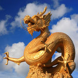 Golden dragon with clear blue sky Stock Photos